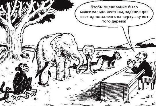 Если бы в школе животных был бы такой же подход.